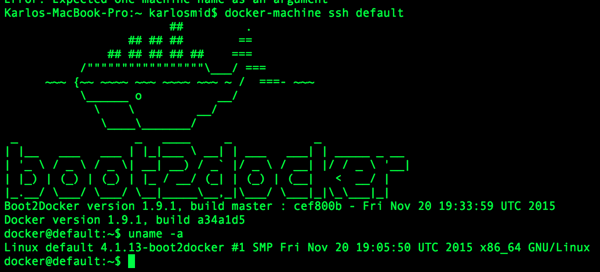 Headless browser testing in docker container