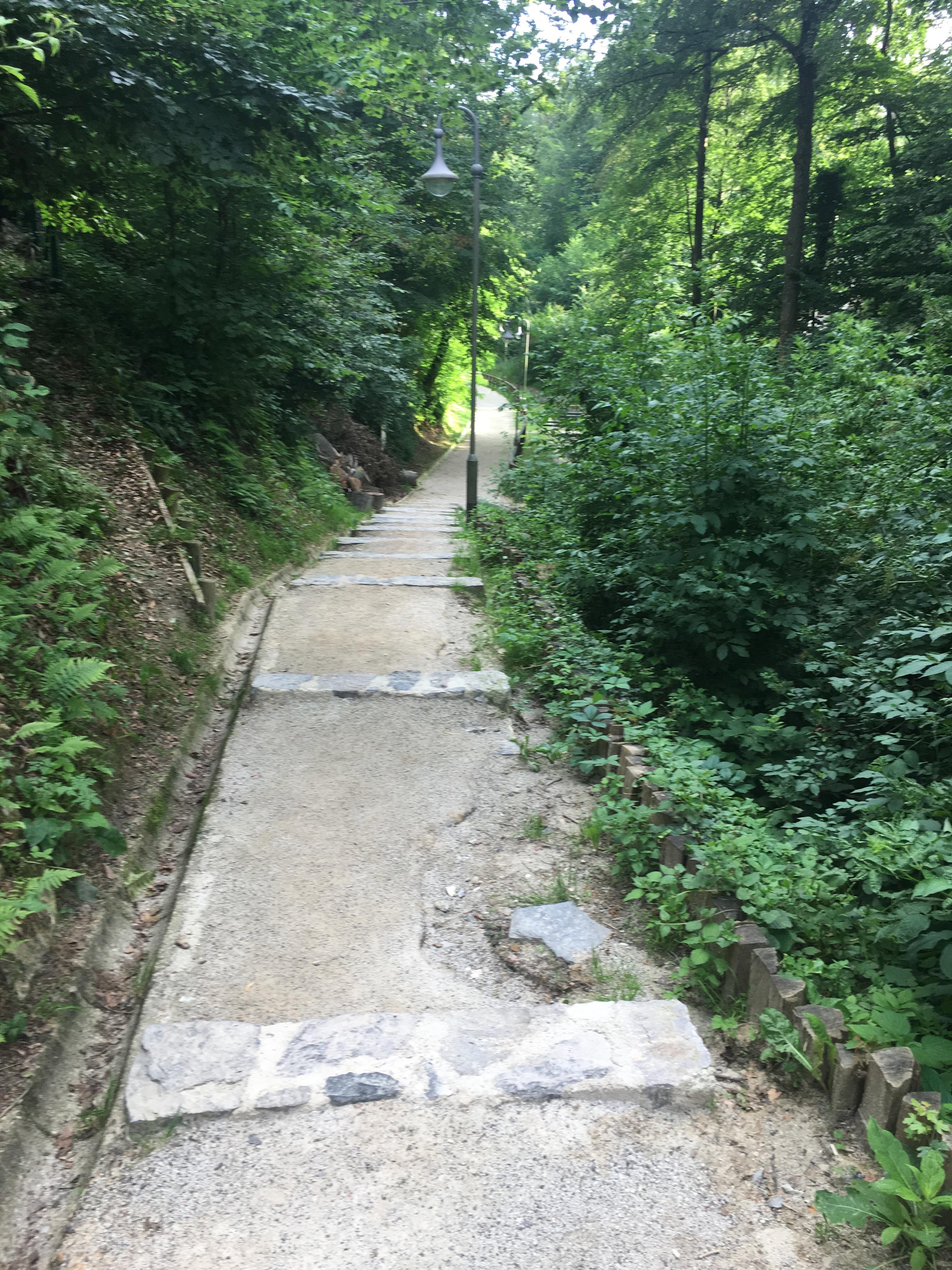 Take Me To The Path
